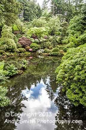 pond at Japaese Gardens