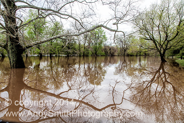 Flood Waters in the Picnic and Boat Launch Area of The Betzwood Section of Valley Forge Park