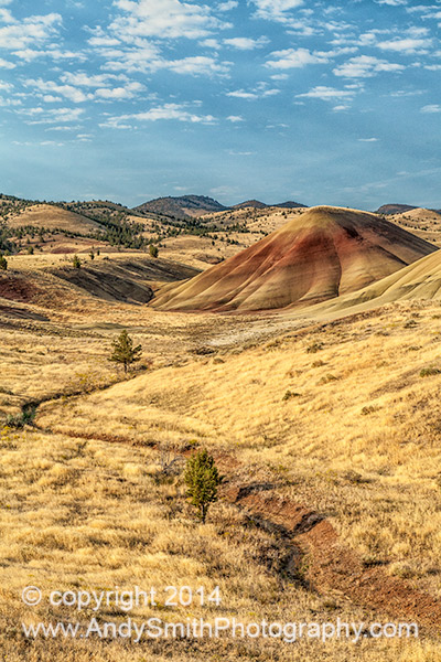 Overlooking the Painted Hills